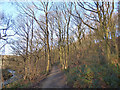 SE2332 : Lower path in Post Hill woods  by Stephen Craven