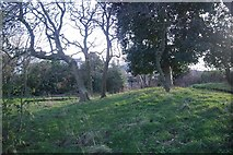 SJ3589 : St James's Mount by Richard Webb