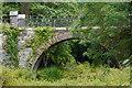 V9787 : Bridge on driveway to Muckross House, Killarney National Park by Phil Champion