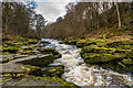 SE0656 : The Strid by Ian Capper