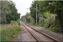 TQ2669 : Tramlink by N Chadwick