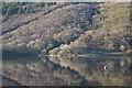 SH7109 : The western end of Talyllyn Lake by Nigel Brown