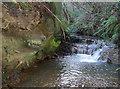 ST6463 : A gentle water cascade by Neil Owen