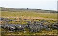 NY6408 : Outcropping band of limestone by Trevor Littlewood
