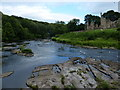 NZ2947 : River Wear at Finchale Priory by Mat Fascione