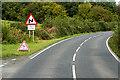 H1057 : A46, Lough Shore Road near Church Hill by David Dixon