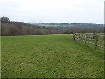 SP8800 : Hillside overlooking Great Missenden, Bucks by Jeremy Bolwell