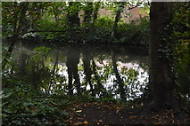 TQ2668 : The dark waters of the River Wandle by N Chadwick