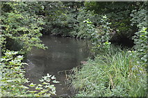 TQ2767 : River Wandle by N Chadwick