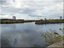 SJ8196 : Pomona Dock #3 by Gerald England