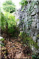 SD8065 : Dry stone wall beside B6480 by Roger Templeman