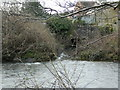 ST0380 : Outfall of the Nant  Felin-fach into the River Ely by John Lord
