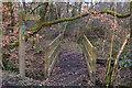 SS8321 : North Devon : Footpath by Lewis Clarke