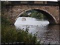 SE4824 : The Great North Road bridge at Ferrybridge by derek dye