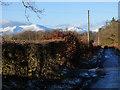 NS4385 : Duncryne Road by Thomas Nugent
