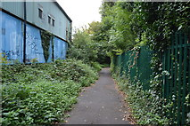 TQ2766 : Wandle Trail by N Chadwick