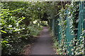 TQ2766 : Wandle Trail by N Chadwick