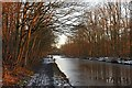 NT0876 : Winter sunlight on the Union Canal by Greg Fitchett