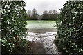 SP8639 : Campbell Park labyrinth by Philip Jeffrey
