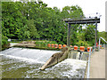 TQ7053 : Teston Weir, River Medway by Robin Webster
