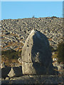 SD5480 : Limestone boulder, Farleton Fell by Karl and Ali