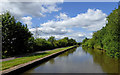 SJ8842 : Canal north of Hem Heath in Stoke-on-Trent by Roger  Kidd
