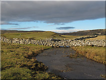 SD8965 : Malham Water, looking upstream by Stephen Craven