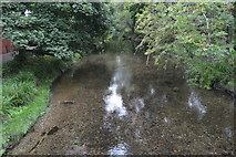 TQ2865 : River Wandle by N Chadwick