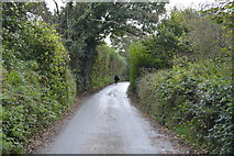 SX4061 : Lane, Botusfleming by N Chadwick