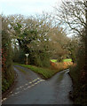 SX9378 : Lane junction, Greenway Lane by Derek Harper