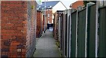 SE2733 : Cedar Close, Armley, Leeds by Mark Stevenson
