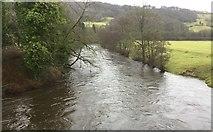 SK3057 : River Derwent by Chris Thomas-Atkin