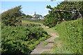 SX0551 : South West Coast Path by N Chadwick
