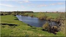 SE3766 : The River Ure by Alan Walker
