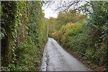 SX4061 : Narrow lane by N Chadwick
