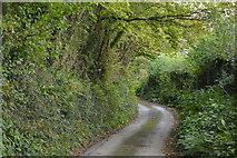 SX4161 : Lane to Moditonham Quay by N Chadwick