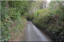 SX4060 : Lane to Carkeel by N Chadwick