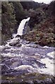NX4972 : Buck Loup waterfall on the Grey Mare's Tail Burn at Talnotry by Richard Sutcliffe