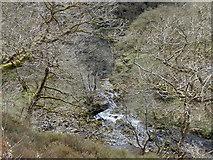 SN9210 : Braiding in the Afon Mellte by Rudi Winter