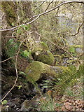 SN9210 : Unnamed tributary of the Afon Mellte by Rudi Winter