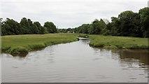 SN0403 : Carew River by Alan Walker
