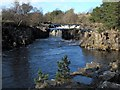 NY9027 : Low Force by Gordon Hatton
