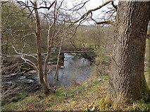 SN9211 : Footbridge on the Afon Mellte by Rudi Winter