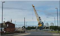 NZ4057 : Crane at Corporation Quay, Sunderland by Mat Fascione
