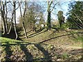 SO3958 : Motte and moat at Pembridge by Philip Halling