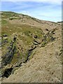 SN8058 : Hillside and Nant Tadarn in Powys by Roger  Kidd