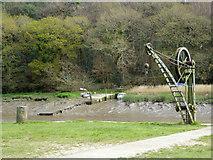 SX4268 : Cotehele Quay - crane by Chris Allen