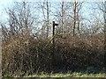 SK2031 : Start of an unused footpath by Ian Calderwood