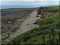 NZ4162 : Shoreline at Whitburn by Mat Fascione