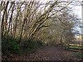 SE3330 : Transpennine Trail east of Knostrop by Stephen Craven